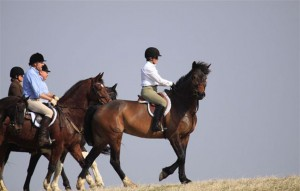 Carine riding Spencer with NHH as Field Master