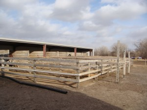 Outdoor Stalls With Runs