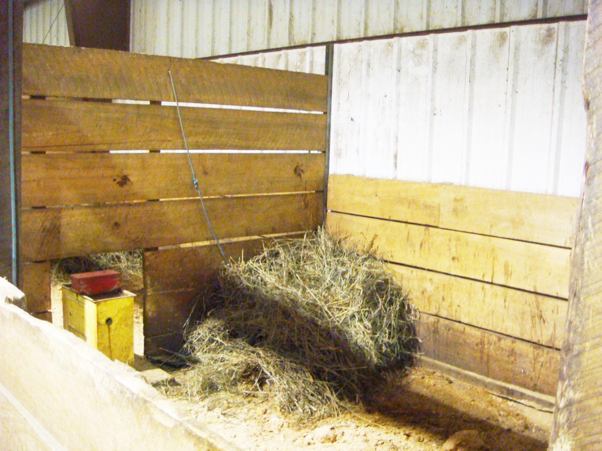 Indoor stall