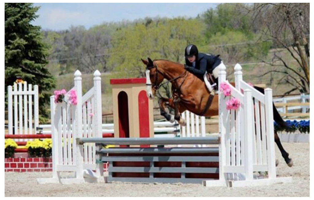 Horse Show Services At The Farm At Butterflat Creek