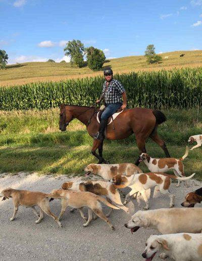 Dave Kruger with North Hills Hunt Hounds